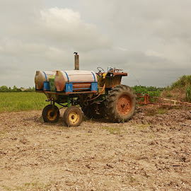 Antique Louisiana Tractor by Ron Olivier - Transportation Other ( antique louisiana tractor )