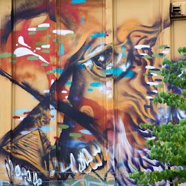 Train Art 1 by Greg Head - Novices Only Street & Candid ( fence, portland, art, train, spray paint )