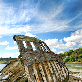 fossil by Natalie Houlding - Transportation Boats