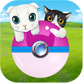 Download My Cat GO APK for Android Kitkat