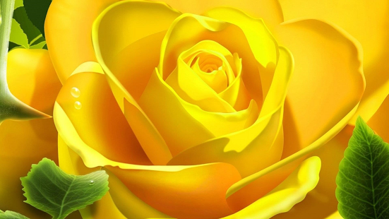 Yellow roses. Flower wallpaper - screenshot