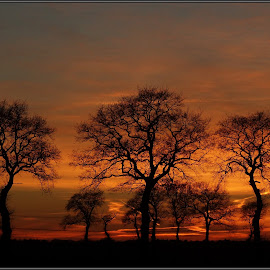 Burning horizon!  by Gert de Vos - Landscapes Sunsets & Sunrises