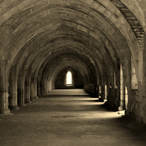 Chambers by Hayley Warriner - Buildings & Architecture Other Interior ( haunting, vaults, church, black and white, arches, beautiful, ruins, atmospheric, chamber )