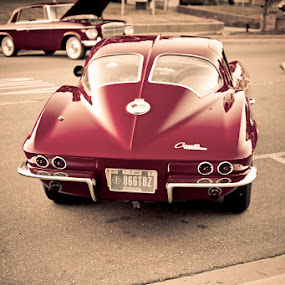 Red Rides by Nicholas Conn - Transportation Automobiles ( car, corvette, red, transportation )