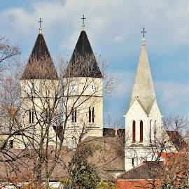 Veszprém historical center by Pavel Vysoglad - Buildings & Architecture Public & Historical