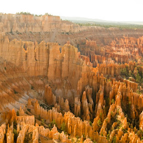 Bryce Canyon by Rob Donner - Landscapes Mountains & Hills