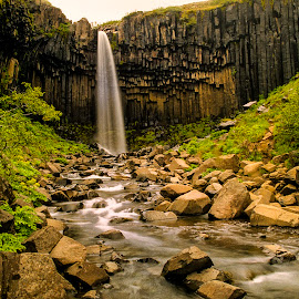 Svartifoss by Stanley P. - Landscapes Waterscapes ( waterfall, landscape, waterscapes )