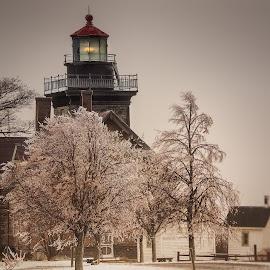 Simple Lighthouse by Sandra Hilton Wagner - Buildings & Architecture Public & Historical ( lighthouse, dusk, landmark, trees, architectural, building )