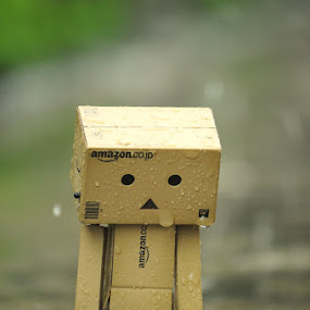 hold the Rain by Ardhy Muhammad - Artistic Objects Toys ( danbo, macro, japan, stiillife, toys, object )