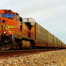 BNSF 5001  8362 by Jim Suter - Transportation Trains