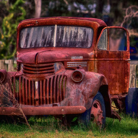 Rusty by Damyn Burridge - Transportation Automobiles ( car, wreck, vehicle, rusty, rust )