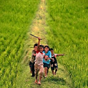 by Zulkifli Sukarta - Babies & Children Children Candids ( laskas pelangi, toraja, indonesia )
