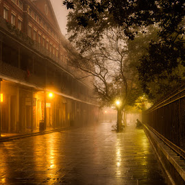 Jackson Square by Sheldon Anderson - City,  Street & Park  Historic Districts ( new orleans, haunting, dec, fog, am, 2016, jackson square )