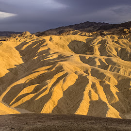 by Tracey Dolan - Landscapes Deserts