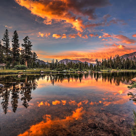 Mirror by Casey Mitchell - Landscapes Sunsets & Sunrises ( mountains, dawn, sunset, reflected, sun )