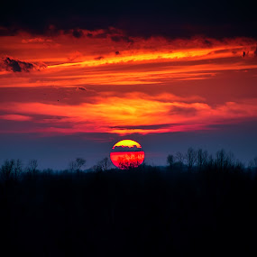 Shelby's Sunset by Scott Bryan - Landscapes Sunsets & Sunrises ( clouds, sky, color, sunset, trees, landscape, rural,  )