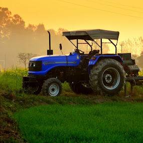 Punjab by Jatin Malhotra - City,  Street & Park  Street Scenes ( field, punjab, sunset, shine, tractor )