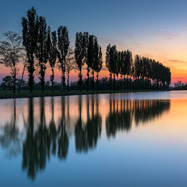 Reflections by Roberto Melotti - Landscapes Underwater ( water, roberto melotti, sky, look-out, reflections, trees, perspective, lake, view, sunrise, italy )