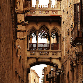 by Ewan Allardice - Buildings & Architecture Public & Historical ( barcelona, spain, gothic quarter, chappel )