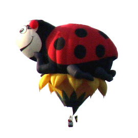 Ladybug Hot Air Balloon by Christine B. - Transportation Other ( wind, lady bug, balloons, hot air balloons )