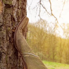 Woman shoe on tree trunk by Denny Gruner - Artistic Objects Clothing & Accessories ( nobody, twigs, modish, old, fashion, single, footwear, bizarre, used, tree trunk, hanging, nature, tree, crazy, woman, shoe, classic, boots, branches, shoes, grass, worn, high heel, sunlight, tree bark, charm, dilapidated, solid, outdoor, nailed boots, brown, high, shoe sole )
