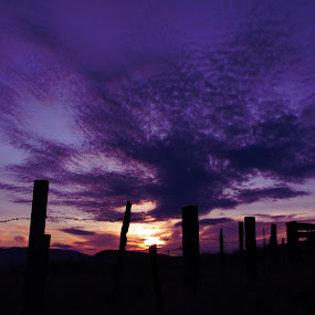 by Jennifer Holmes - Landscapes Sunsets & Sunrises ( clouds, fence, purple, sunrise, country )
