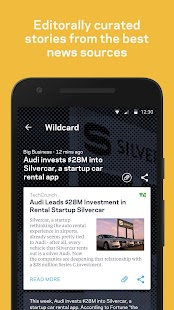 Wildcard Screenshot