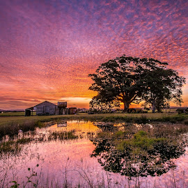 by Adam McDonald - Landscapes Cloud Formations