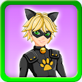 Dress up Cat Noir Miraculous