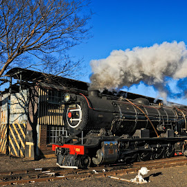 Steamy Girl by Rob Vandongen - Transportation Trains