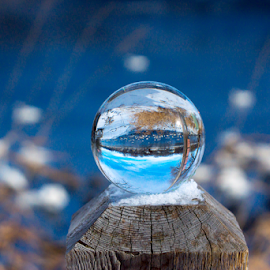 Swan Thru The Glazing Ball by Tina Hailey - Artistic Objects Other Objects ( water, swans, blue, tina's captured moments, glass ball, crystal )
