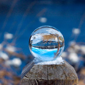 Swan Thru The Glazing Ball by Tina Hailey - Artistic Objects Other Objects ( water, swans, blue, tina's captured moments, glass ball, crystal, , serenity, mood, factory, charity, autism, light, awareness, lighting, bulbs, LIUB, april 2nd )