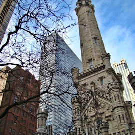 Buildings In Chicago 5 by Yvonne Collins - Buildings & Architecture Other Exteriors