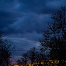 Blue Hour Sunset Silhouette by Julie Wooden - Landscapes Weather ( stormy, north dakota, stormy sky, silhouette, blue hour, hebron, landscape, spring, nature, tree line, sunset, outdoors, trees, evening )