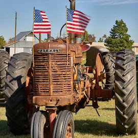 Rusted Tractor  by Jeff Brown - Transportation Other ( farm, farm tractor, tractor )