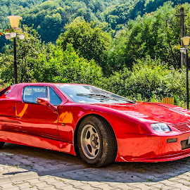 Lady in red by Dan Orsa - Transportation Automobiles ( car, old, red, automobile, racer, classic )
