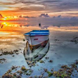 Sunrise  by Bobo Tandiono - Transportation Boats ( reflection, boat.seaweed. clouds. waterscape )