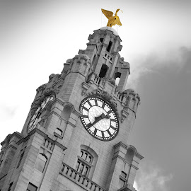 Liver Building Liverpool UK by Howard Wilson - Buildings & Architecture Office Buildings & Hotels ( the beatles, liver building, uk, merseyside, clock, black and white, liverpool, liver bird, architecture, three graces )
