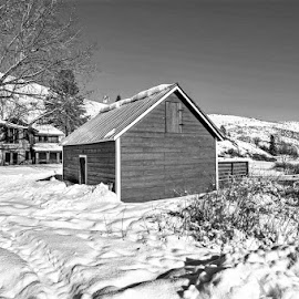 Snowed In by Scott Schumacher - Black & White Landscapes