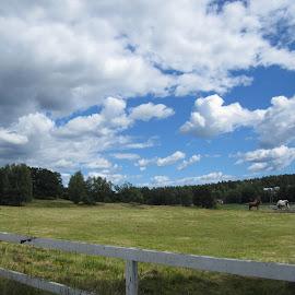 Skärmarö by Viive Selg - Landscapes Cloud Formations