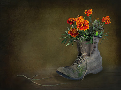 MARIGOLDS - SIZE 10 by Sharon Pierson - Digital Art Things ( , flower, nature, flowers )