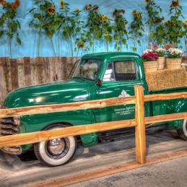 Chevy Truck by Dav Akers - Transportation Automobiles ( truck, california, nikon, chevy, antique )
