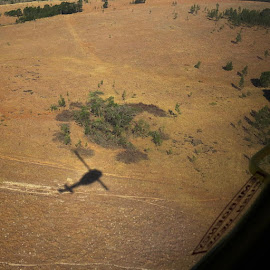 Shadowplay. #shadow #helicopter #huey #belluh1 #aircraft #aviation #winterveld #fireseason #workingonfire #menseselense #canon #canonsx50hs #stutterheim #easterncape #southafrica by Deon Strydom - Transportation Helicopters
