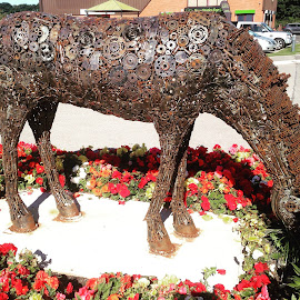 The horse ...sculpture  by Angela Neild - Artistic Objects Other Objects