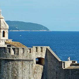 Dubrovnik, Old Town by Vladimir Stojićević - City,  Street & Park  Historic Districts
