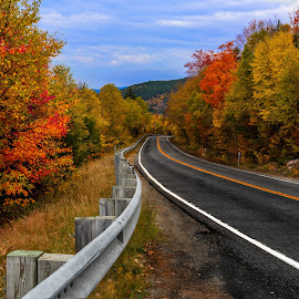 Fall Colors by Arnab Dutta - Transportation Roads ( nature, highway, fall colors, empty, road )