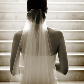 by Robert Evans - Wedding Bride