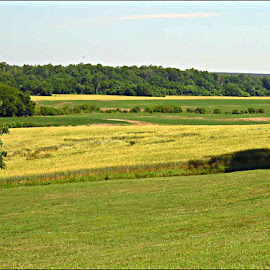 A war was fought here back in 1700s by Danielle Cagle - Landscapes Prairies, Meadows & Fields