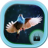 Sweet Blue Bird Locker Theme APK for Bluestacks