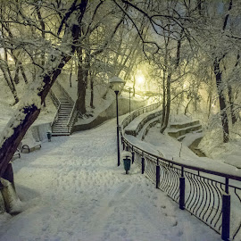 Park Bai Moinesti by Gelu Scurtu - City,  Street & Park  City Parks ( winter, cold, park, snow, trees, city )